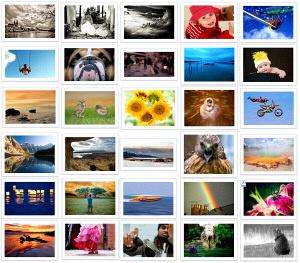 Featured photos